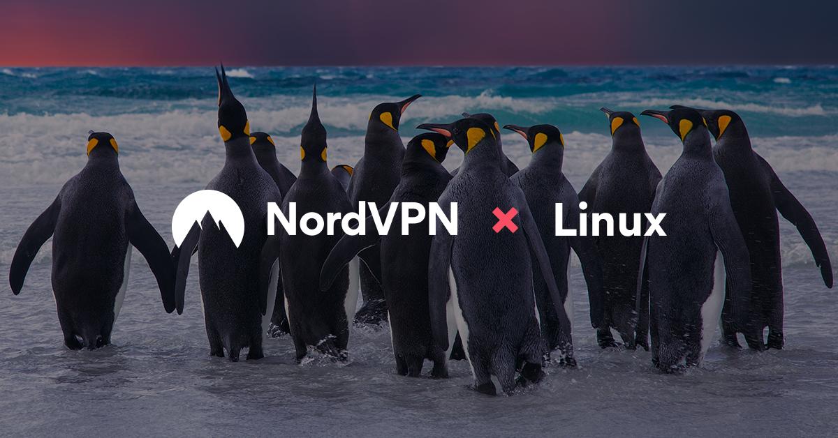 Download the Best VPN for Linux in 2019 Here! | NordVPN