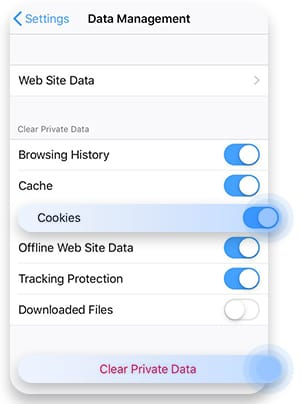 Delete cookies in Mozilla iOS
