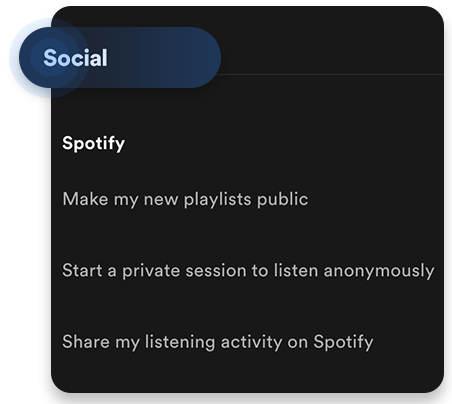 Spotify private session