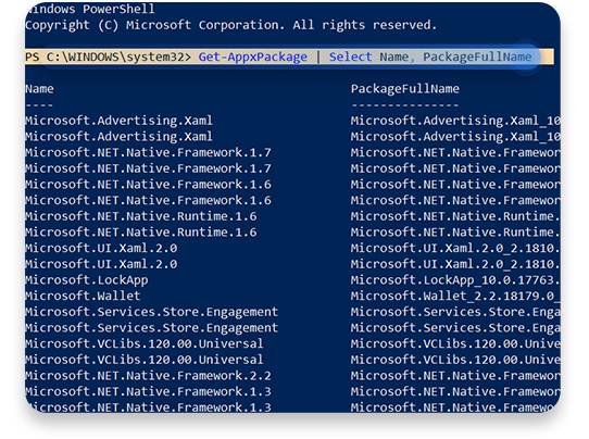 usunąć bloatware (Windows PowerShell): krok 3